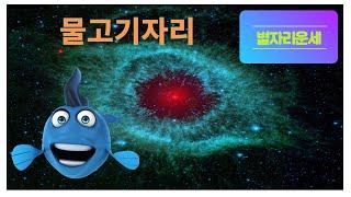 별자리운세 물고기자리/12성좌운/점성술/총운/물고기자리운세