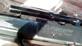 bb gun hunting dove part 2