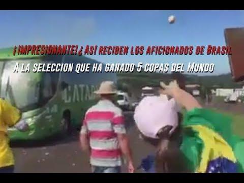 ¿Así reciben los aficionados de Brasil a la Selección que ha ganado 5 copas del Mundo? 2018