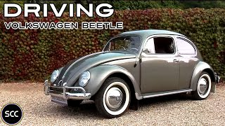 VOLKSWAGEN BEETLE DE LUXE OVAL 1957 - Kever - Full test drive in top gear - Engine sound | SCC TV