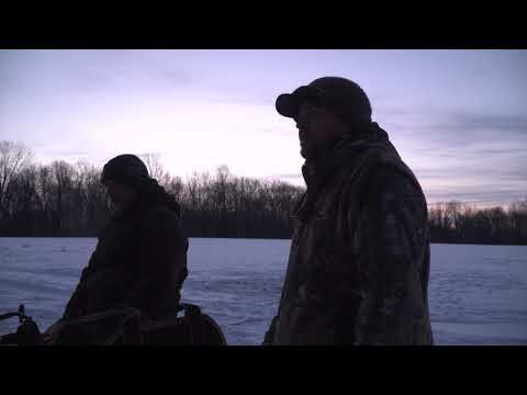 Coyote U - Trapping in Illinois