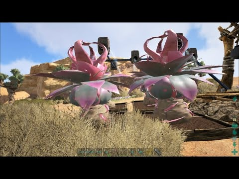 Ark: Scorched Earth S1 Ep19 - Plant Species Y