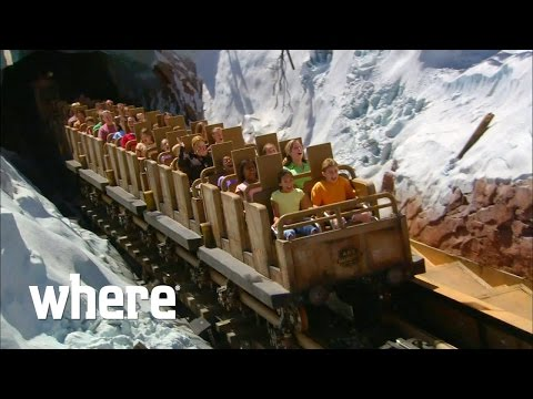 The Top 5 Rides At Walt Disney World