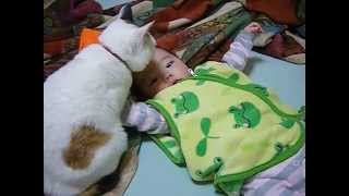 赤ちゃん好きな猫vs放っておいて欲しい赤ちゃん1【The cat which likes a baby but the baby who wants you to hit it 1】