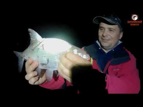 Фидерная ловля осенью (Fish Dream)