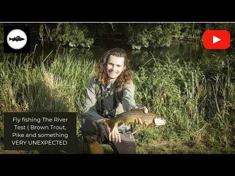 Fly Fishing The River Test (Brown Trout, Pike And Something VERY UNEXPECTED )