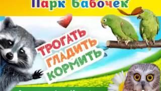 Парк Бабочек(Парк бабочек, уже ставший достопримечательностью Екатеринбурга, приглашает ребят и взрослых к себе в гости..., 2017-02-03T12:44:25.000Z)