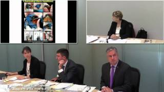 Dr. Helen Caldicott - Impact of Radiation Release - Australian Nuclear Fuel Cycle Royal Commission