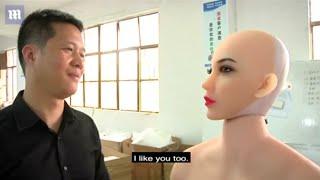 Chinese company WMDOLL develops AI-powered 'smart dolls(romantic doll)