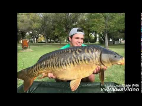 Carp Fishing South Africa (Potchefstroom Dam)
