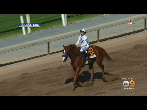 REPORT: Justify Failed Drug Test After Winning Santa Anita Derby, Secret Kept By State Horse Racing