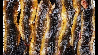 How To Make Yummy Grilled Eels - Different Way Of Cooking Eel Recipe