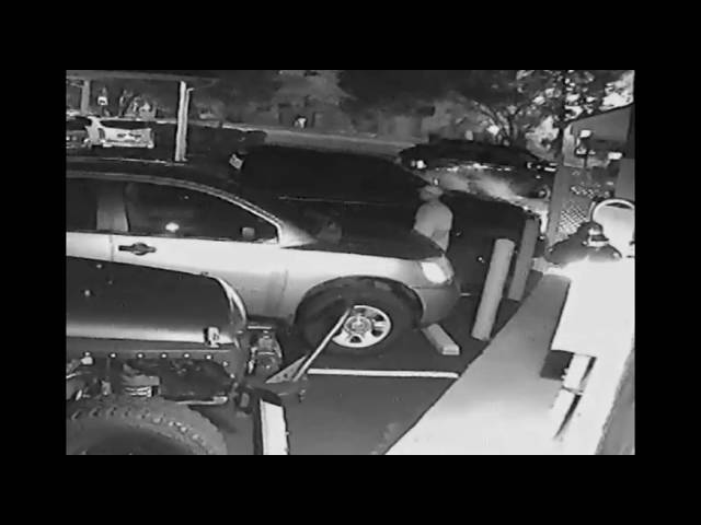 amici-car-cover-theft