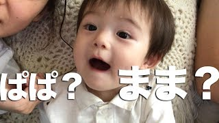 【ルイ日記】パパとママの発音が一緒になっちゃう........w【1才6ヶ月】 thumbnail