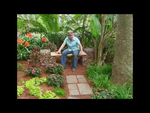 The Gardener Magazine: Planting a garden in the deep shade