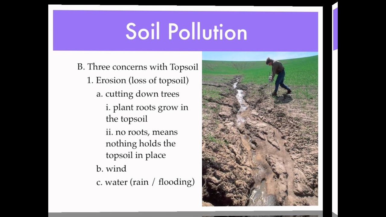 Causes of soil pollution the image kid for Soil pollution