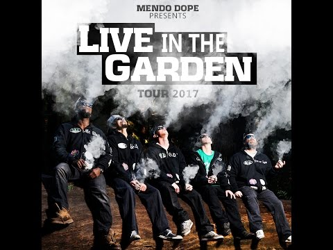 mendo dope how to grow dvd