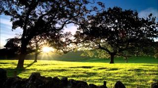 SPA MUSIC RELAXING MEDITATION DEEP BREATHE MIX LONG TIME BY SPAVEVO