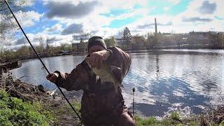 Дождался поклёвки РЫБАЛКА БОБРЫ И ПОГОДА Рыбалка с берега на донки леща продолжаеться