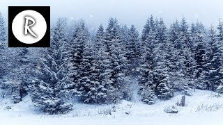 Blizzard Storm, Relaxing Sounds for Sleep | Howling Wind & Snowstorm, Winter Ambiance 4K