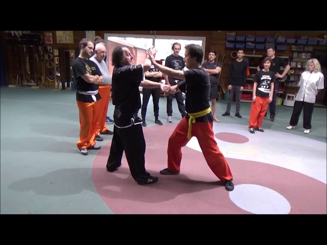 WING CHUN principles Live by GM Walter Toch