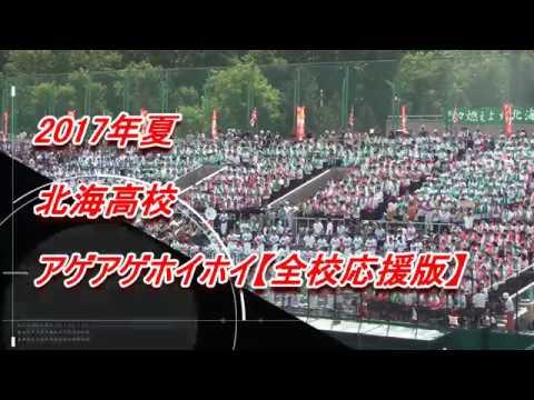 【高校野球応援】 北海高校 アゲアゲホイホイ 【全校応援版】