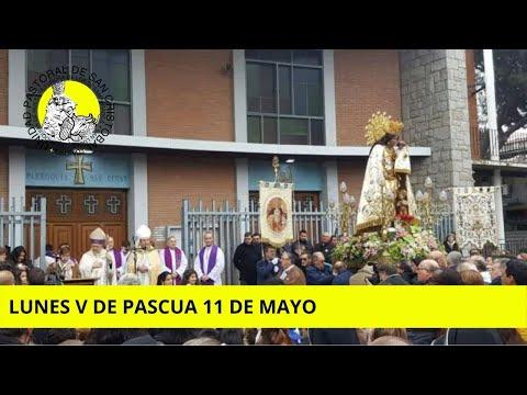 misa-del-lunes-v-de-pascua-11-de-mayo