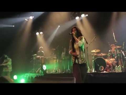 dvd-zona-ganjah-en-vivo-hd---fumando-vamos-a-casa-(19/32)