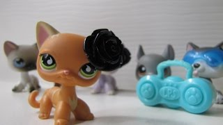 Littlest Pet Shop: Shake It Off Music Video [FOR 5K ♡♡]