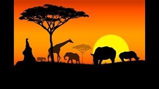 Những Sự Thật Thú Vị Về Châu Phi