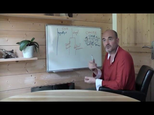 05 - Le Système Nerveux Autonome (SNA) expliqué par la théorie polyvagale.