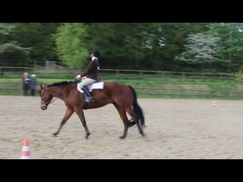 One Hot Destination: Hunt seat equitation