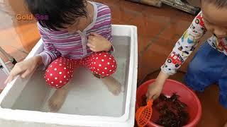 Trò Chơi Bé Tắm Cùng Cua EP2 – Thử Thách Blue sea và Gold Sea Tắm Cùng Con Cua.
