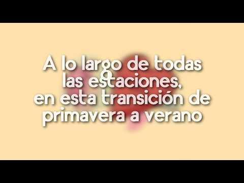 atlas - valentine (prod. flavors) | Letra en Español