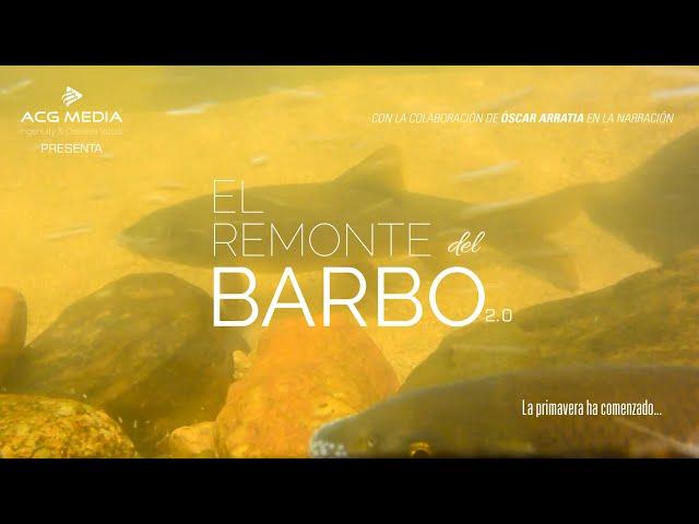 El Remonte del Barbo 2.0