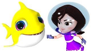 Baby Shark | Kindergarten Songs | Nursery Rhymes & Kids Songs by Kachy TV