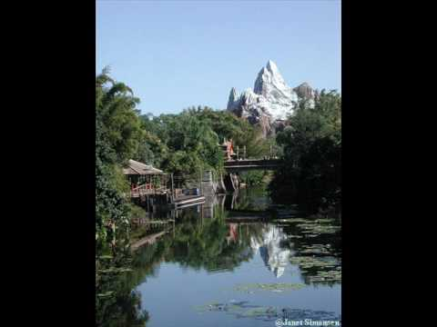 compare and contrast disney world v Answer 1 of 12: hi all just returned from disneyland paris staying at davy crockett ranch for three nights and thought it would be helpful to share my experiences i've been to walt disney.