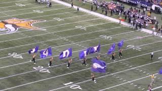 Celebrating a Minnesota Vikings score