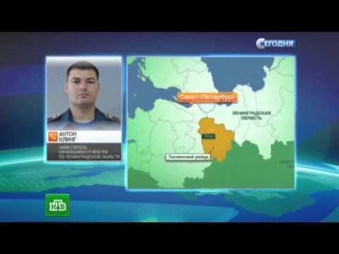 ВДТП смаршруткой вЛенобласти погибли пятеро