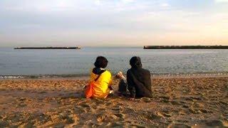 """Wire fox terrier """"nana"""" and her family Walking down a calm beach Ap..."""