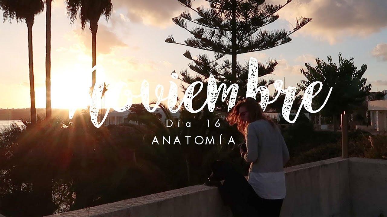 ⏯🙊 Cartas a Noviembre. Anatomía. Día 47 de 365. | lademenorca ...