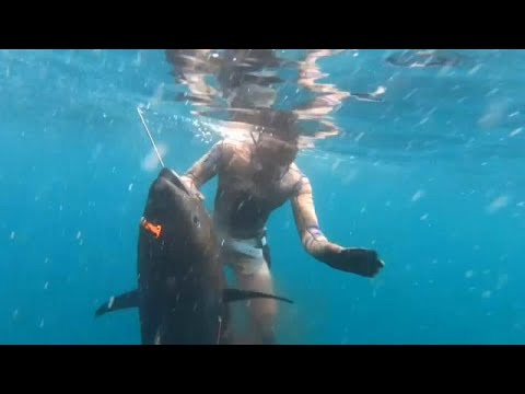 شاهد: صياد أمريكي يناور سمكة تونة عملاقة نادرة  - نشر قبل 44 دقيقة