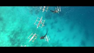 Unbelievable Whale Shark Watching in Oslob Philippines w/ DJI MAVIC Pro Drone