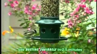Brome 1024 Squirrel Buster Plus Wild Bird Feeder