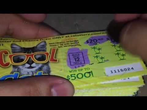 Playing Cool Cat & Easy Cash Scratchers