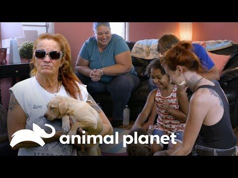Tía María Torres recuerda a los cachorros más tiernos | Pit Bulls y Convictos | Animal Planet