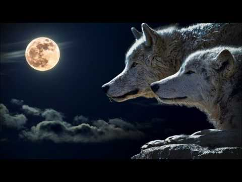 The Real Story of The Two Wolves