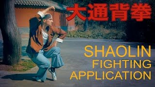 Shaolin Da Tongbei Quan, Fighting Application