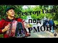 CВИДАНИЕ СЕКТОР ГАЗА на ГАРМОНИ ЛЮБИМЫЕ ПЕСНИ под ГАРМОНЬ mp3