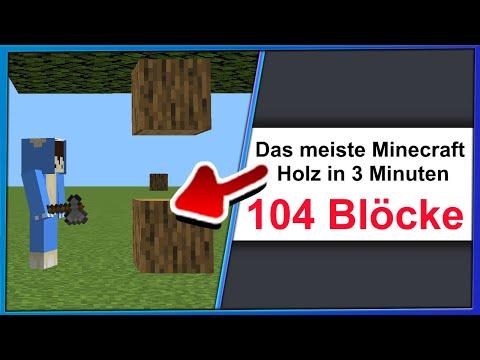 3 YouTuber BRECHEN die DÜMMSTEN Minecraft WELTREKORDE